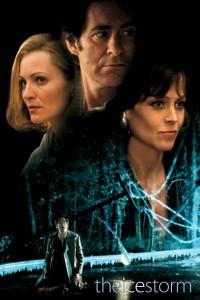 """Affiche du film """"Ice Storm"""""""