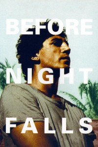 """Affiche du film """"Avant la nuit"""""""
