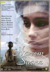 """Affiche du film """"Le dernier harem"""""""