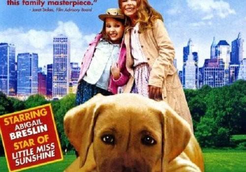 """Affiche du film """"Panique à Central Park"""""""