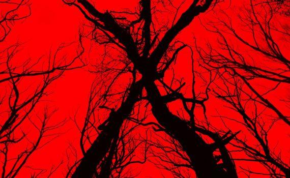 """Affiche du film """"Blair Witch"""""""