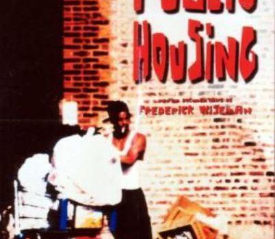 """Affiche du film """"Public Housing"""""""