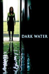 """Affiche du film """"Dark Water"""""""
