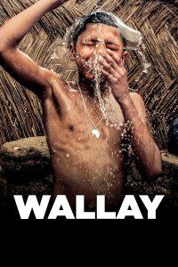 """Affiche du film """"Wallay"""""""