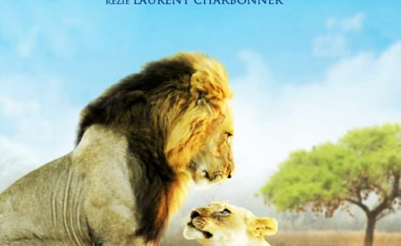 """Affiche du film """"Les Animaux Amoureux"""""""