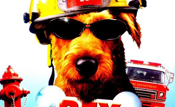 """Affiche du film """"Rex, Chien Pompier"""""""