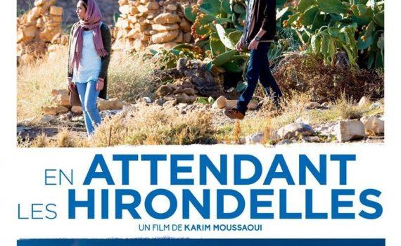"""Affiche du film """"En Attendant Les Hirondelles"""""""