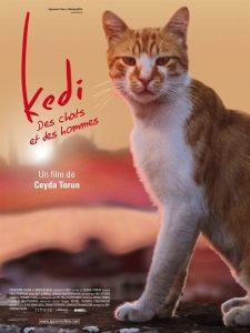 """Affiche du film """"Kedi - Des chats et des hommes"""""""