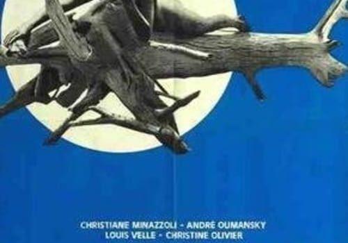 "Affiche du film ""Unfaithful Night"""