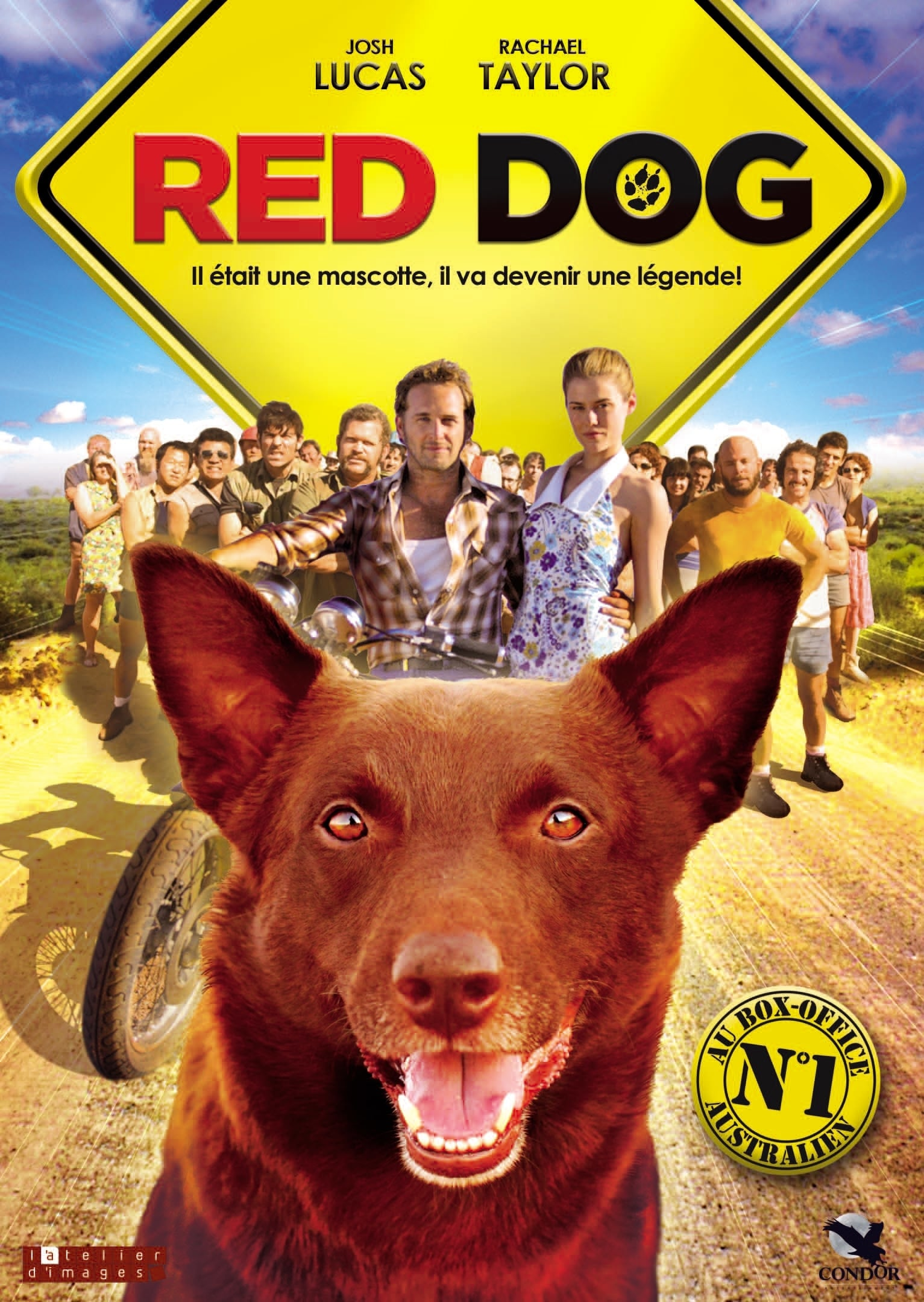 """Affiche du film """"Red Dog"""""""