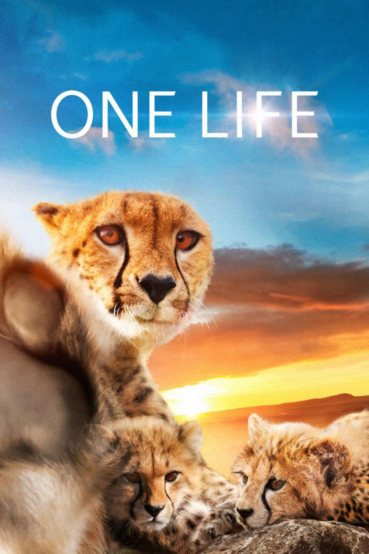 "Affiche du film ""One Life"""