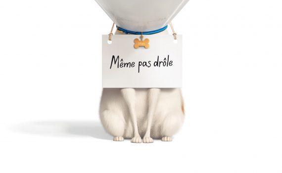 """Affiche du film """"Comme des bêtes 2"""""""