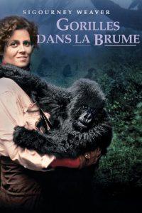"""Affiche du film """"Gorilles dans la brume"""""""