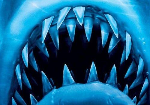"""Affiche du film """"Les Dents de la mer 4 : La Revanche"""""""