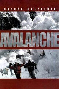 "Affiche du film ""Danger Avalanche"""