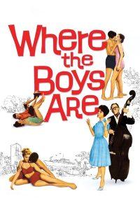"Affiche du film ""Where the Boys Are"""