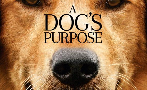 """Affiche du film """"A Dog's Purpose"""""""
