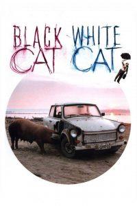 "Affiche du film ""Black Cat, White Cat"""